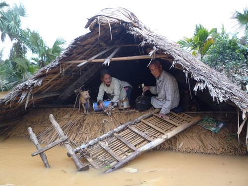 Công ty Nedi2 ủng hộ đồng bào miền Trung  bị thiên tai, lũ lụt