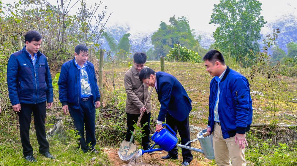 Phát động trồng cây nhân dịp Xuân Đinh Dậu - 2017 của Công ty cổ phần đầu tư và phát triển điện Miền Bắc 2